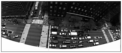 roofcarsfoto.jpg